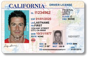 Debate – For Immigrants Illegal Dmv License Drive-only Driver's