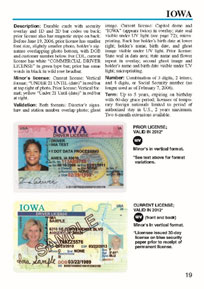 E-Verify with Driver License Check Better Protects Employers