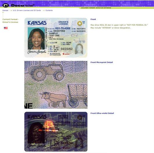 online id verification software